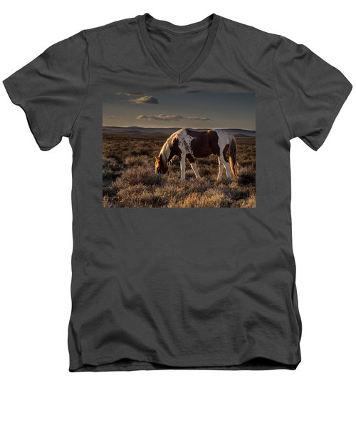 Evening Solitude In Sand Wash Basin Men's V-Neck T-Shirt