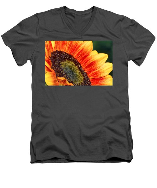 Evening Sun Sunflower Men's V-Neck T-Shirt