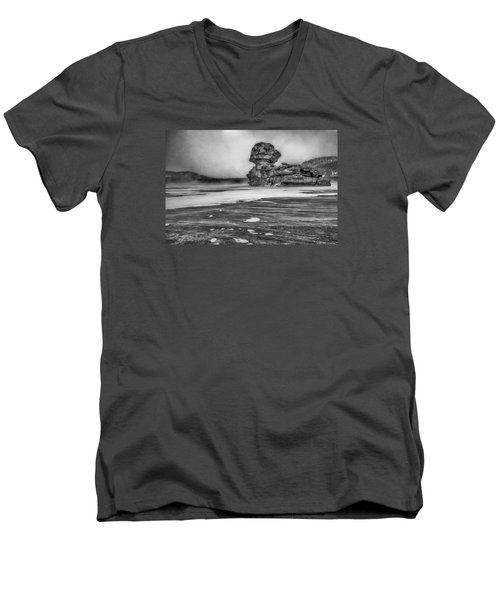Exposed To Wind And Weather Men's V-Neck T-Shirt