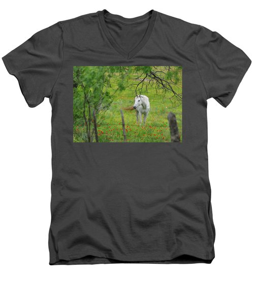 Eye On Beauty Men's V-Neck T-Shirt by Lynn Bauer