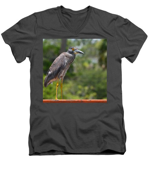 Men's V-Neck T-Shirt featuring the photograph Eye To Lens by DigiArt Diaries by Vicky B Fuller