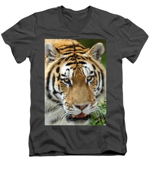 Men's V-Neck T-Shirt featuring the photograph Eyes Of The Tiger by John Haldane