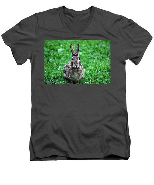 Men's V-Neck T-Shirt featuring the photograph Eyes Wide Open by Trina  Ansel