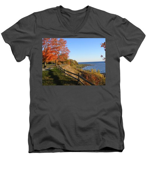 Fall Beauty Men's V-Neck T-Shirt
