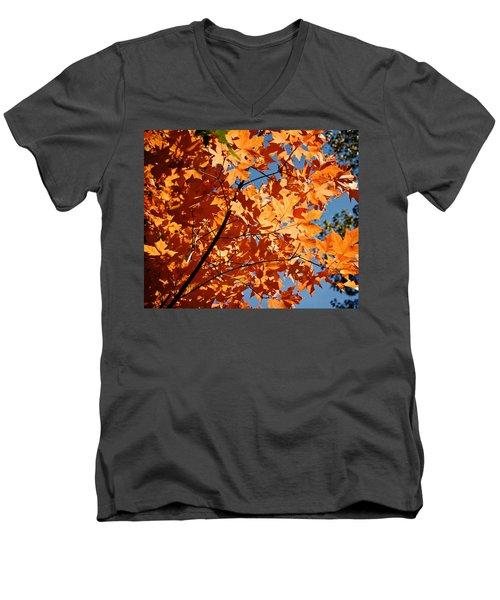 Fall Colors 2 Men's V-Neck T-Shirt