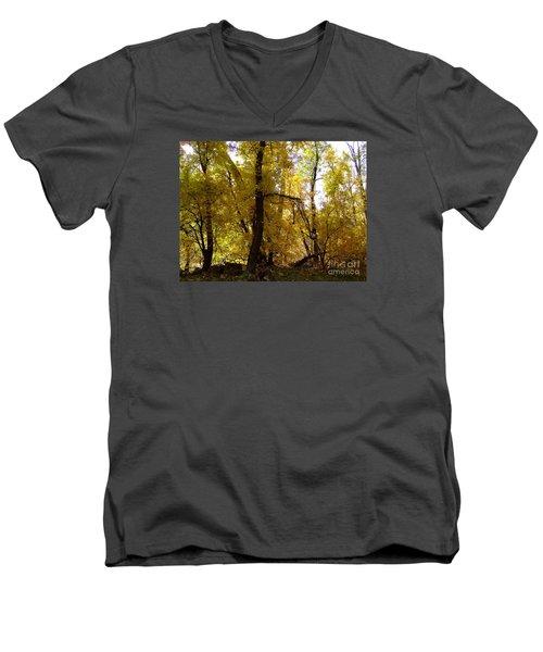 Fall Colors 6169 Men's V-Neck T-Shirt