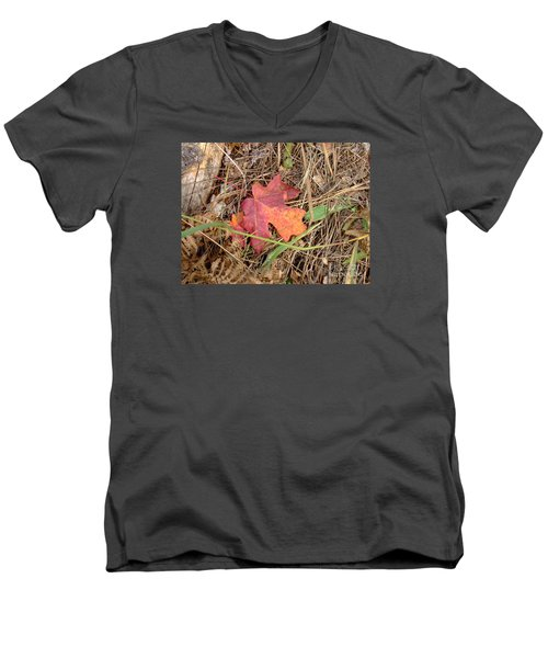 Fall Colors 6312 Men's V-Neck T-Shirt