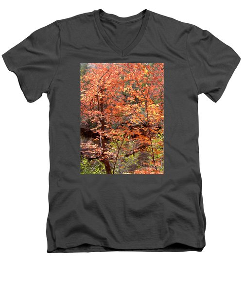 Fall Colors 6335 Men's V-Neck T-Shirt