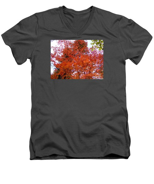 Fall Colors 6359 Men's V-Neck T-Shirt