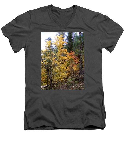 Fall Colors 6368 Men's V-Neck T-Shirt