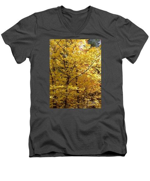 Fall Colors 6371 Men's V-Neck T-Shirt