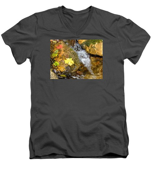 Fall Colors 6389 Men's V-Neck T-Shirt