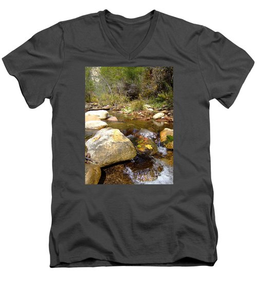 Fall Colors 6390 Men's V-Neck T-Shirt
