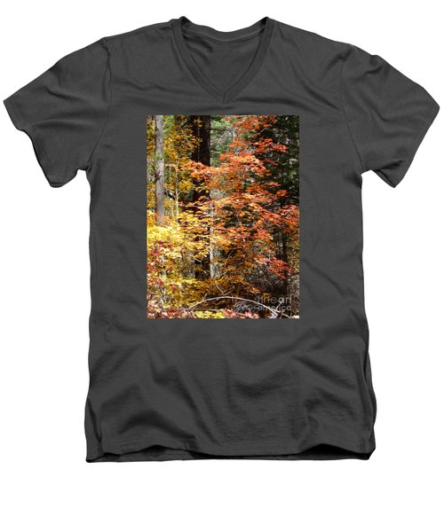 Fall Colors 6412 Men's V-Neck T-Shirt