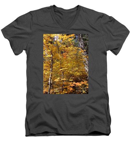 Fall Colors 6446 Men's V-Neck T-Shirt