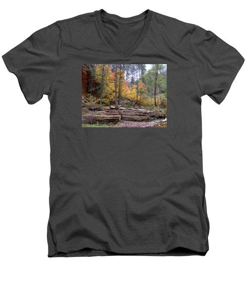 Fall Colors 6463-02 Men's V-Neck T-Shirt
