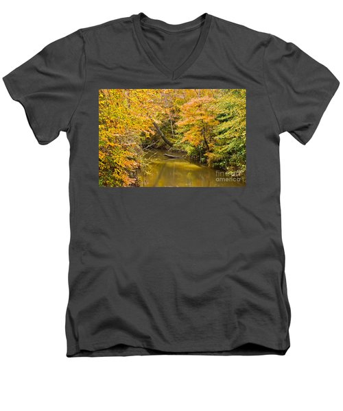 Fall Creek Foliage Men's V-Neck T-Shirt