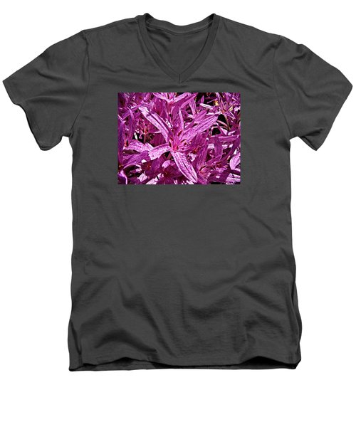 Men's V-Neck T-Shirt featuring the photograph Fall Crocus by Nick Kloepping