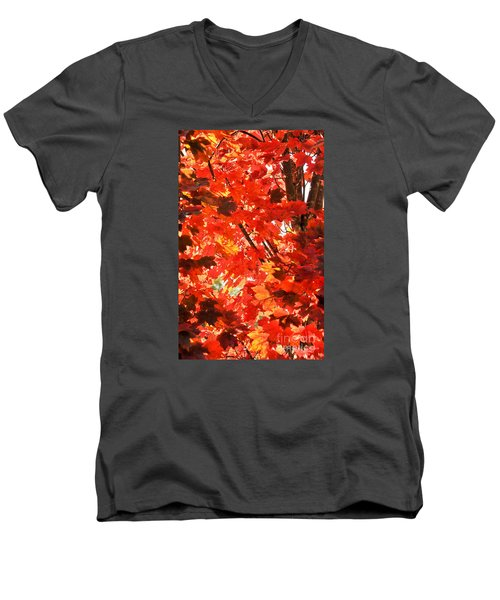 Men's V-Neck T-Shirt featuring the photograph Fall by David Perry Lawrence