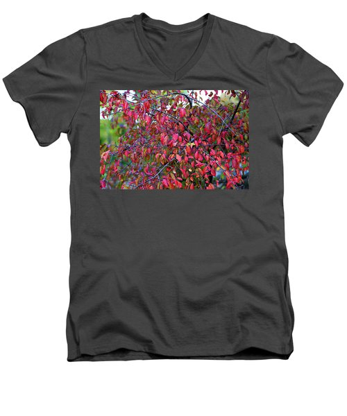 Fall Foliage Colors 05 Men's V-Neck T-Shirt