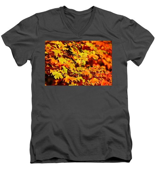 Fall Foliage Colors 13 Men's V-Neck T-Shirt