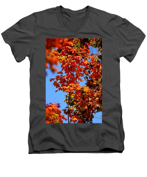Fall Foliage Colors 15 Men's V-Neck T-Shirt