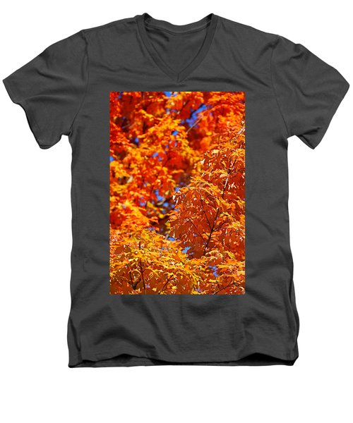 Fall Foliage Colors 17 Men's V-Neck T-Shirt