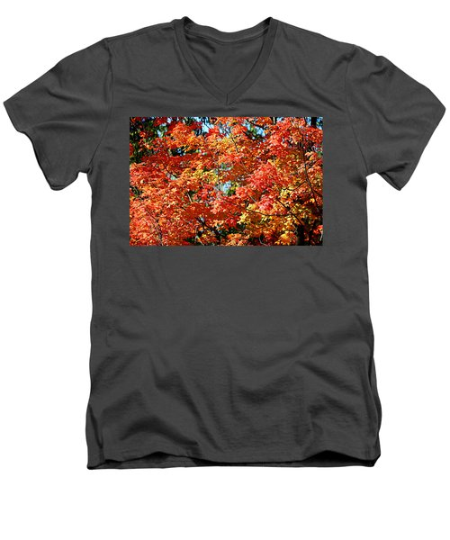 Fall Foliage Colors 22 Men's V-Neck T-Shirt