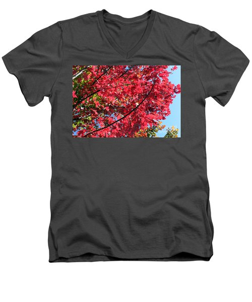 Men's V-Neck T-Shirt featuring the photograph Fall In Illinois by Debbie Hart