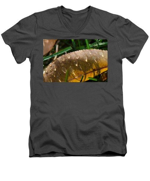 Fall Morning Leaf And Dew Men's V-Neck T-Shirt