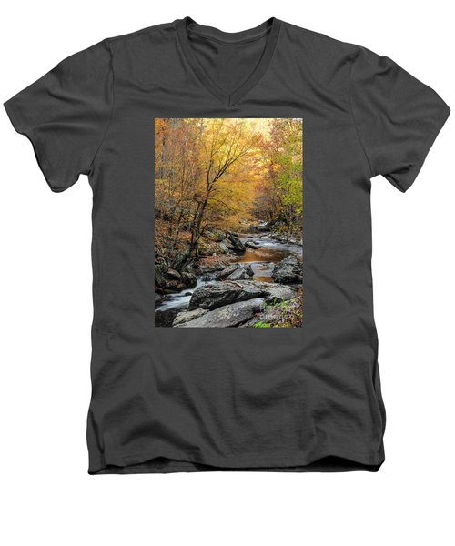 Men's V-Neck T-Shirt featuring the photograph Fall Mountain Stream by Debbie Green