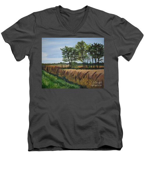 Fall On Douglas Road Men's V-Neck T-Shirt