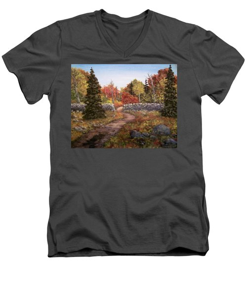 Fall Path Men's V-Neck T-Shirt