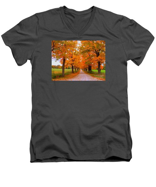 Falling For Romance Men's V-Neck T-Shirt