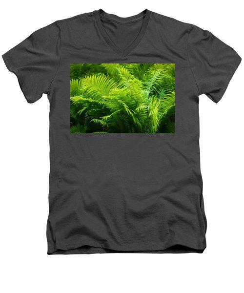 Ferns 1 Men's V-Neck T-Shirt