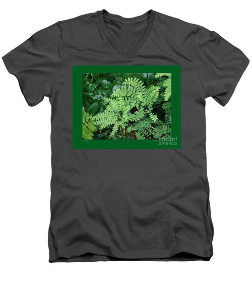Ferns-iii Men's V-Neck T-Shirt