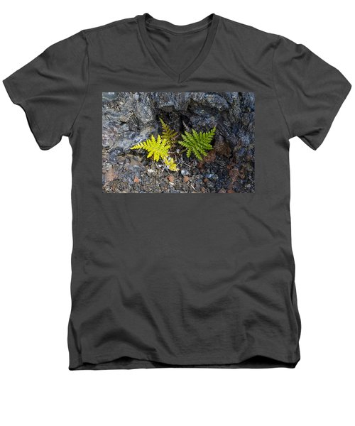 Ferns In Volcanic Rock Men's V-Neck T-Shirt