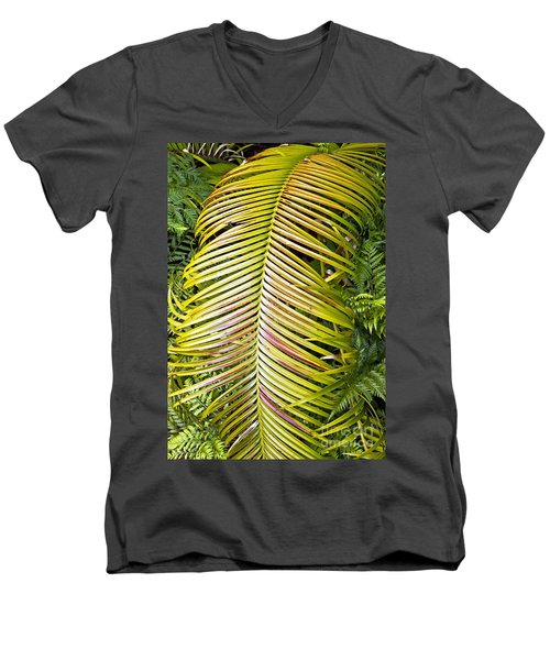 Men's V-Neck T-Shirt featuring the photograph Ferns by Kate Brown