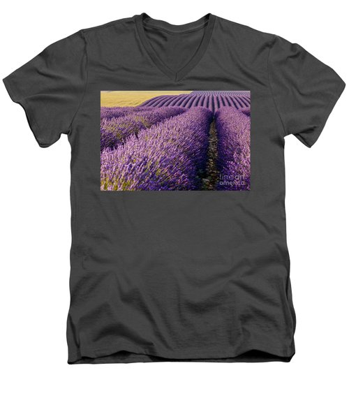 Fields Of Lavender Men's V-Neck T-Shirt