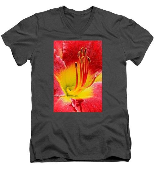 Flower 12 Men's V-Neck T-Shirt