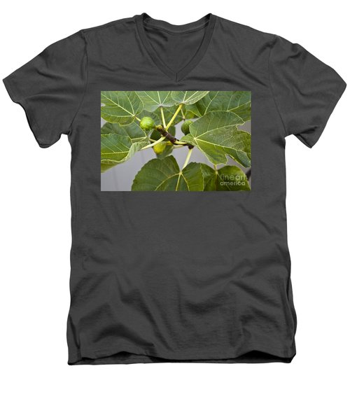 Men's V-Neck T-Shirt featuring the photograph Figalicious by David Millenheft