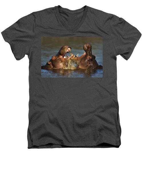 Fighting Hippo's Men's V-Neck T-Shirt by Johan Swanepoel