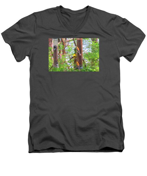 Men's V-Neck T-Shirt featuring the photograph Finches Enjoying Their Snack by Tina M Wenger