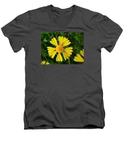 Wild Fine Leaved Sneezeweed Men's V-Neck T-Shirt