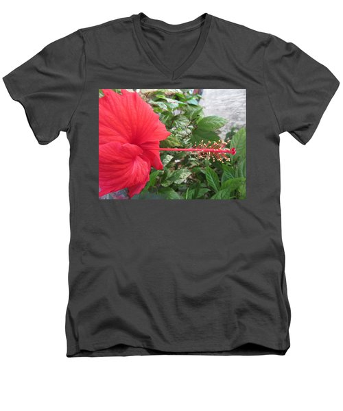 Fire And Ice Hibiscus Men's V-Neck T-Shirt