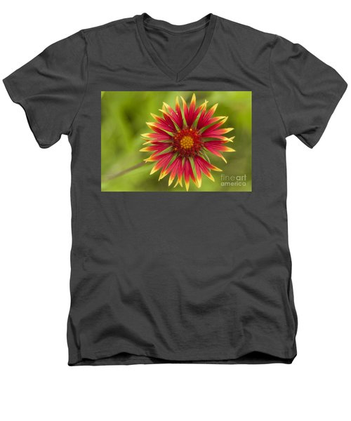 Firewheel Men's V-Neck T-Shirt
