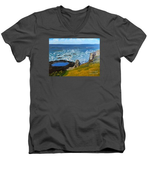 Flagstaff Point  Men's V-Neck T-Shirt by Pamela  Meredith