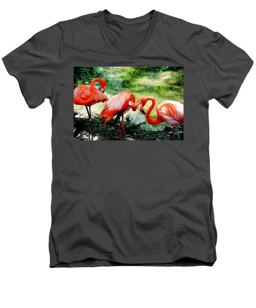 Flamingo Friends Men's V-Neck T-Shirt
