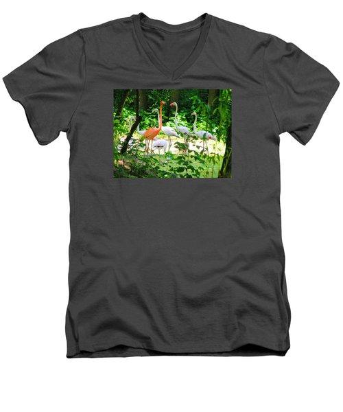 Flamingo Men's V-Neck T-Shirt by Oleg Zavarzin