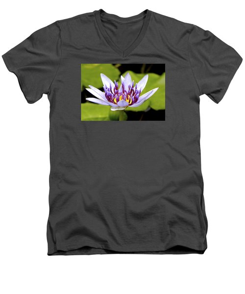Men's V-Neck T-Shirt featuring the photograph Floating Purple Waterlily by Lehua Pekelo-Stearns